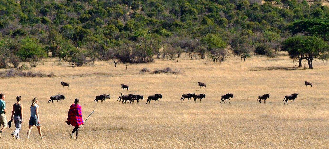 kenya-safaris-from-diani-beach-masai-mara-ir-safaris-robert-safaris-adventure