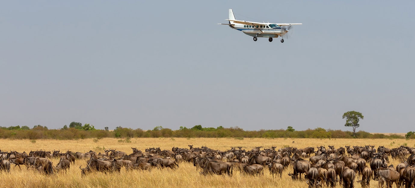 2 Days Masai Mara Air Safari from Mombasa