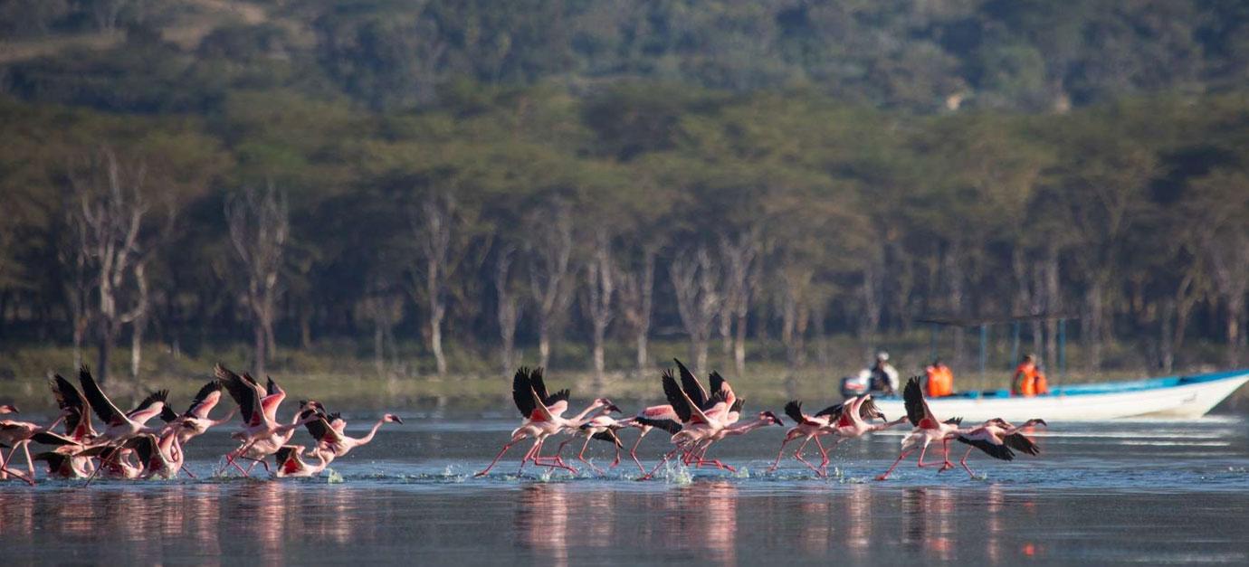 robert-safaris-adventure-safaris-from-nairobi-kenya-robert-safaris-adventure-galu-beach